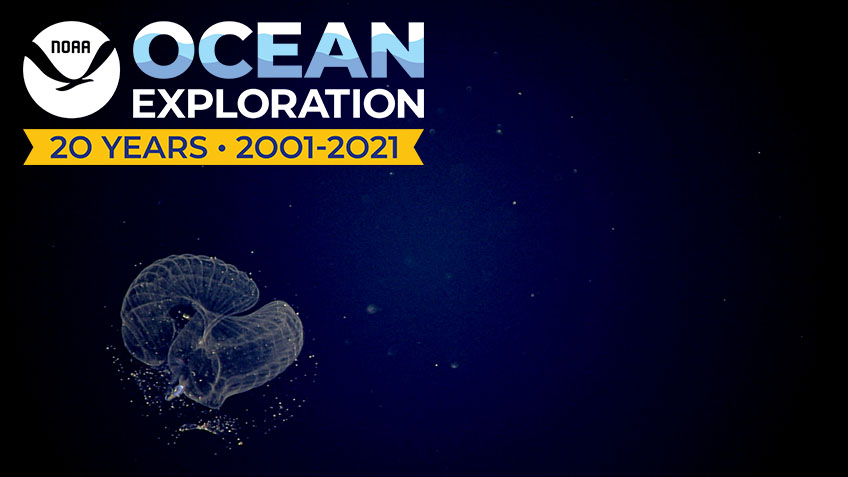 Celebrating 20 Years of NOAA Ocean Exploration