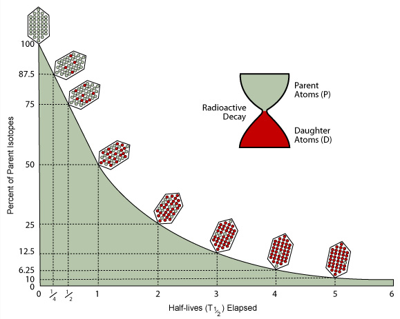 Difference between radioactive decay radiometric dating