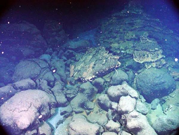 Underwater Pillow Lava on Vimeo