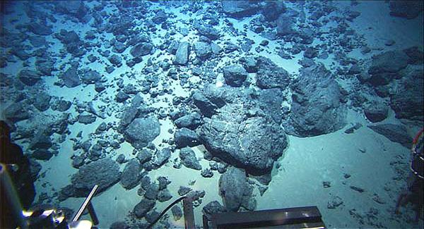 Seafloor At 2,170 Feet