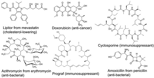 Did you know? Molecular structures of some mainstay drugs – directly isolated, or based on, microbial natural products.