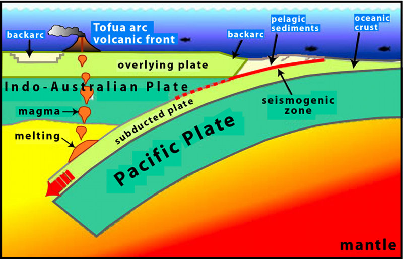 This illustration shows the Pacific plate in the east colliding with the Indo-Australian plate in the west.