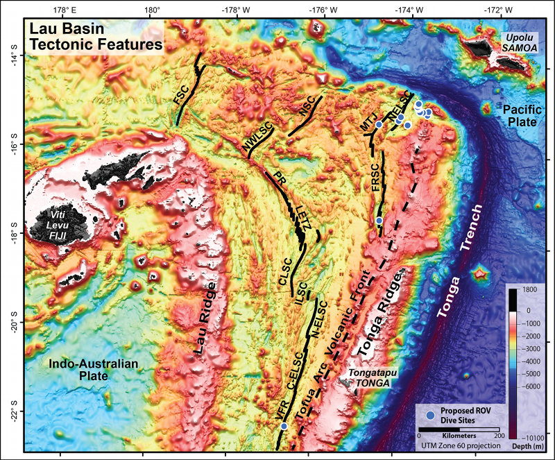 Tectonic features of the Lau Basin overlaid on satellite altimetry data.