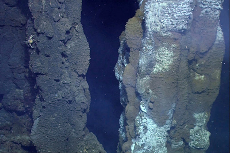 Large chimneys discovered at Fonualei Rift.