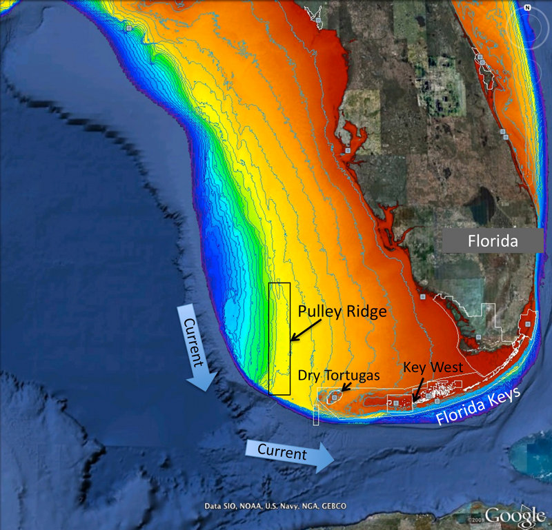 Map of project area showing Pulley Ridge, off the west coast of Florida.