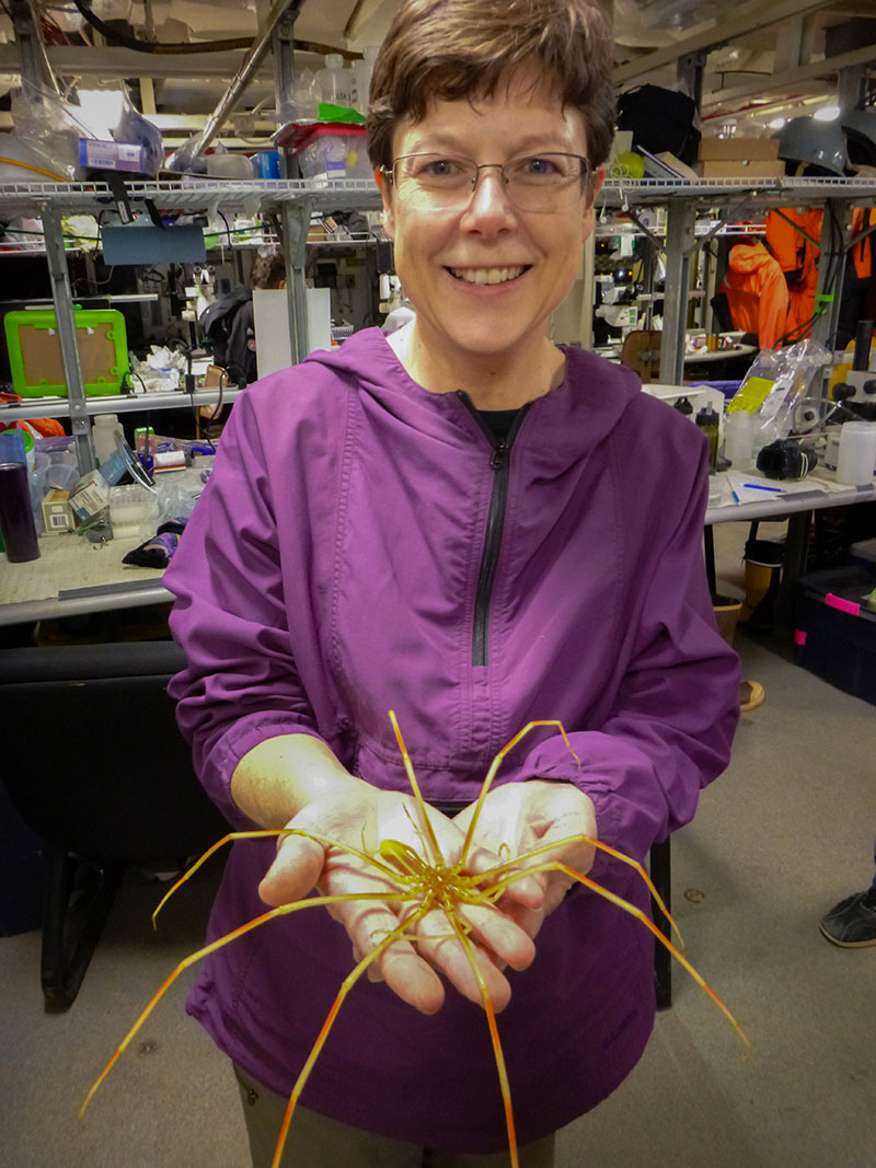 Sandra Thornton holds a sea spider, a specimen collected by the Global Explorer remotely operated vehicle.
