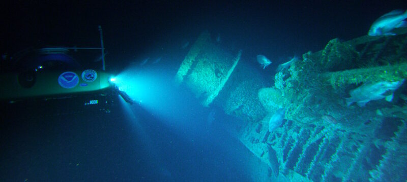 Light from the submersible reveals that fish occupy both the structure of the U-576 and the water column above.