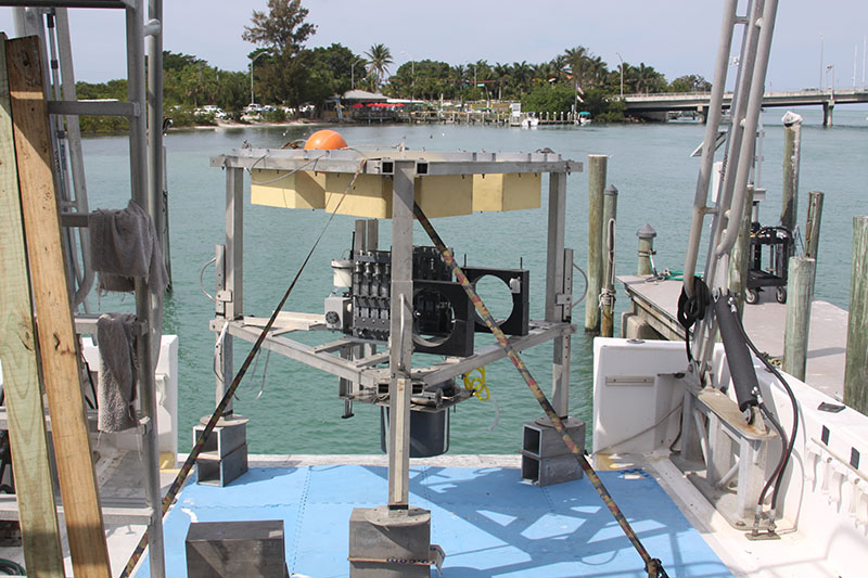 Specifically designed for this project, the benthic lander was deployed to the bottom of Amberjack Hole to collect data and samples for longer periods than divers can, right where the bottom water meets the sediment.