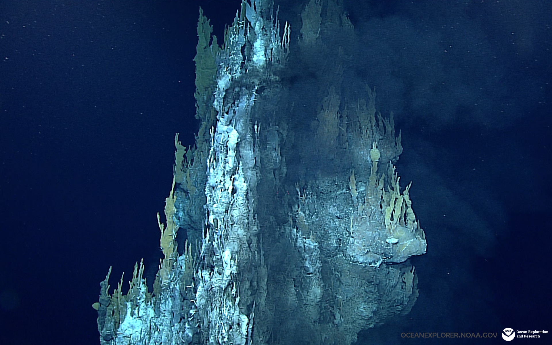 Multimedia: Desktop Wallpaper: NOAA Office Of Ocean