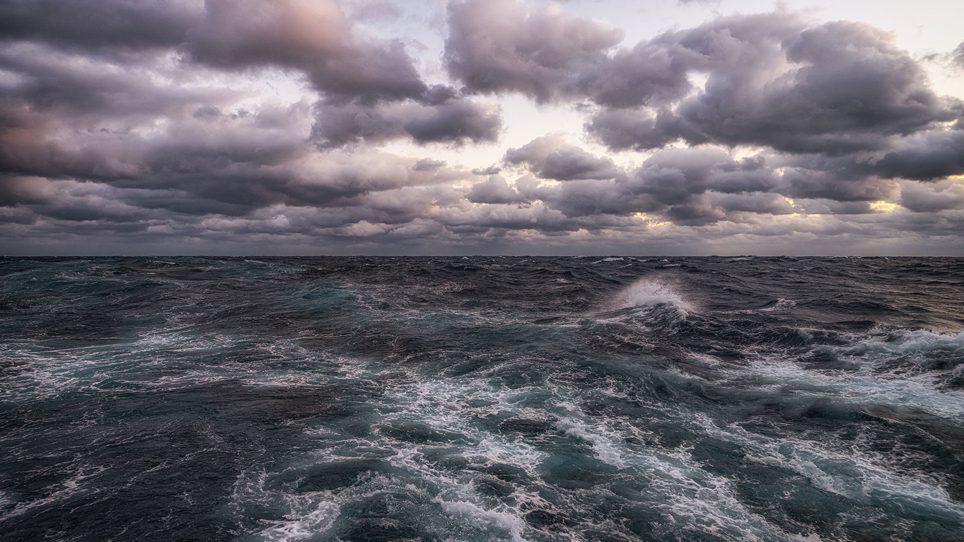 Multimedia: Virtual Meeting Backgrounds: NOAA Office of Ocean Exploration and Research