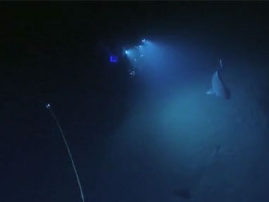 Video of the Greenland Shark encountered on the last dive of the expedition.