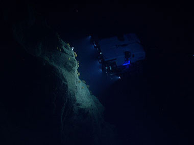ROV D2 explores steep slopes and cliff faces along the walls of Hydrographer Canyon.