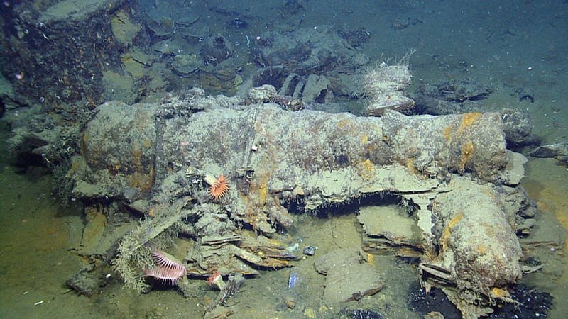 The large cannon on the Monterrey A Shipwreck appears to have been mounted on a pivot carriage.