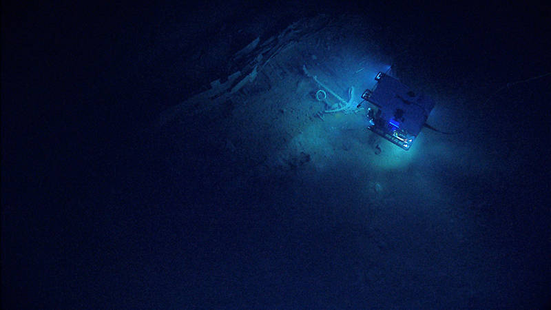 Here, D2 investigates Monterrey Shipwreck C's anchor and the associated fauna and artifacts in the area.
