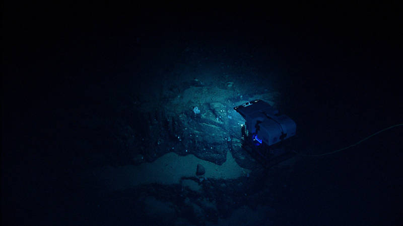 The ROV hovers over a wall on the southern slope of Mytilus Seamount.