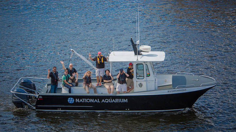 Staff from our hosts, the National Aquarium, welcome Okeanos to Baltimore.