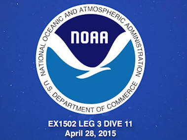 Highlights from Dive 11 on Exocet Seamount, located northwest of St. Croix.