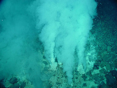 Champagne vent, NW Eifuku seamount in the Marianas region.