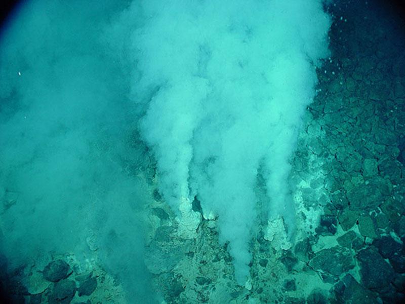 Champagne vent, NW Eifuku seamount in the Marianas region.