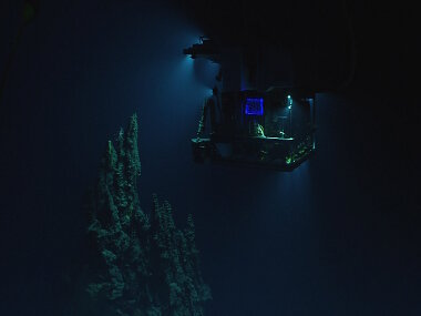 The remotely operated vehicle Deep Discoverer surveying the 14-meter hydrothermal chimney.