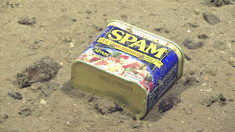 Metal debris – a food tin found at 4,947 meters (3.07 miles) depth in Sirena Canyon off the Mariana Islands.