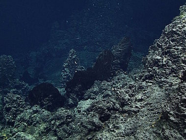 Small hydrothermal vent chimneys on Dive 7 at Chamorro Seamount.