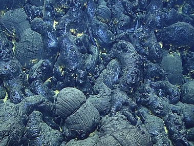On Dive 9, we dove on a new pillow lava flow. Comparison of bathymetry collected in 2013 and 2015 indicated an eruption over 100 meters thick. We visited three pillow mounds that were composed almost entirely of glassy pillow lavas.