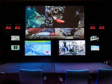 Partners brought a new Internet-1 based Exploration Command Center online at UnderwaterWorld Guam.