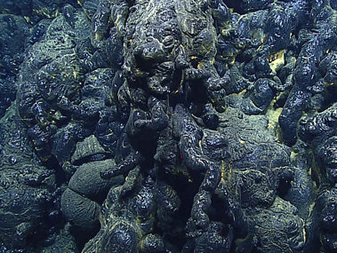 "Shiny black pillow lava with many finger-like ""buds,"" from the recent eruption site that is less than three years old."