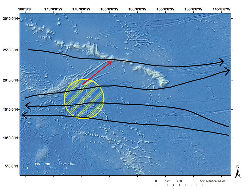 Potential dispersal routes connecting Johnston Atoll to the Hawaiian Archipelago. Black arrows are major current flow patterns and the red arrow is directly below Necker Ridge that could be serving as a seafloor bridge.