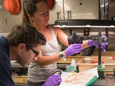 NOAA EPP Intern, Nikola Rodriguez, and NOAA's National Centers for Environmental Information Data Manager, Matt Dornback, process biological specimens collected during an ROV dive.