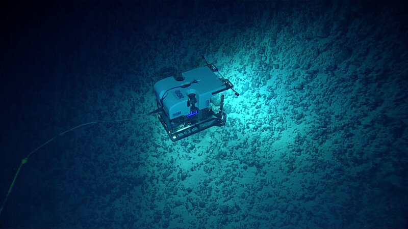 ROV Deep Discoverer explores a talus slope on Verdi Seamount.