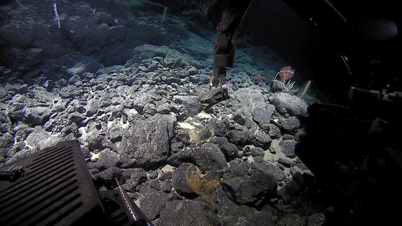 Rock samples can tell us a lot about the geologic origin of the seamount or ridge they were collected from.