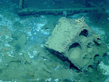 Ship's stove, found amidships, is a likely home for two spider crabs, Rochinia crassa.