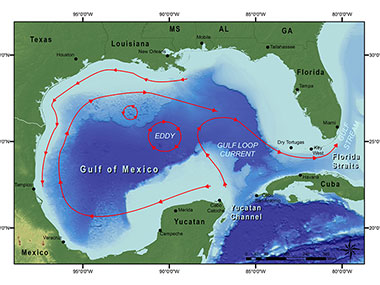 Basic current patterns in the Gulf of Mexico, including the Loop Current.