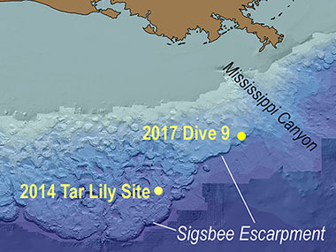 Map showing the northern Gulf of Mexico, with the locations of Dive 09.
