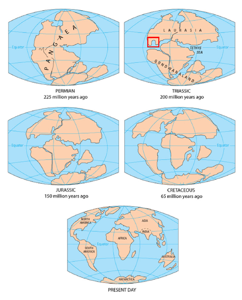 Diagram of continental drift over the past 225 million years. The red square indicates the position of the early Gulf of Mexico basin after Pangea broke apart into Laurasia and Gondwana.