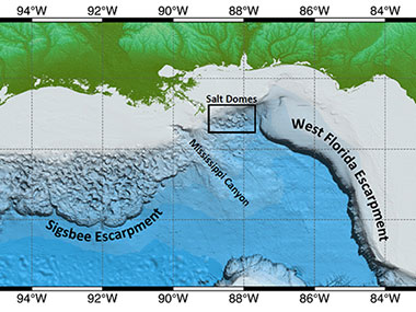 Bathymetric map of the northern Gulf of Mexico with the location of the Sigsbee Escarpment, West Florida Escarpment, Mississippi Canyon, and salt domes indicated.