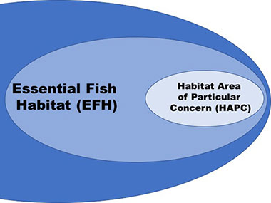 Schematic showing different management categories of fishery resources.
