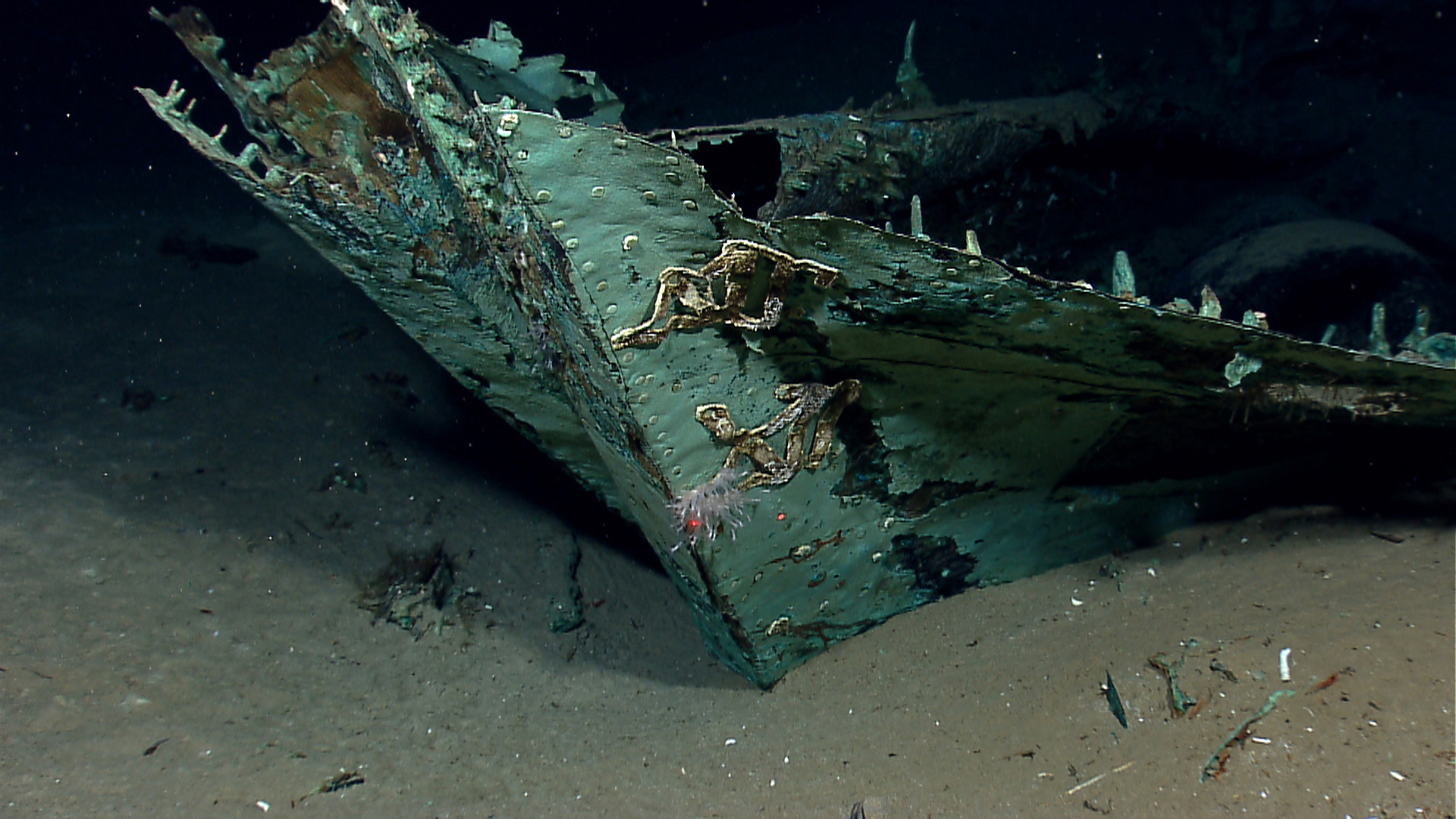 The bow of a ship discovered by Okeanos Explorer in 2012 believed to be a privateer.