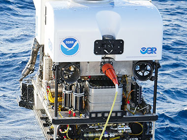 ROV Deep Discoverer in the Gulf of Mexico.