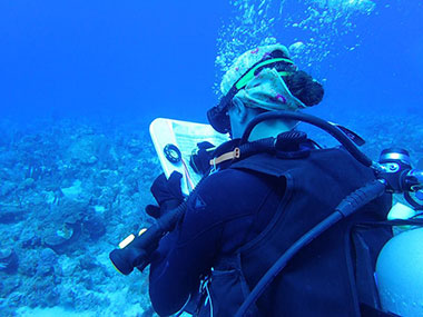 LT Abbitt recording data during a monitoring event at the Diego grounding site in the Dry Tortugas.