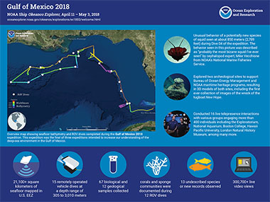 Infographic summarizing accomplishments from the Gulf of Mexico 2018 expedition.