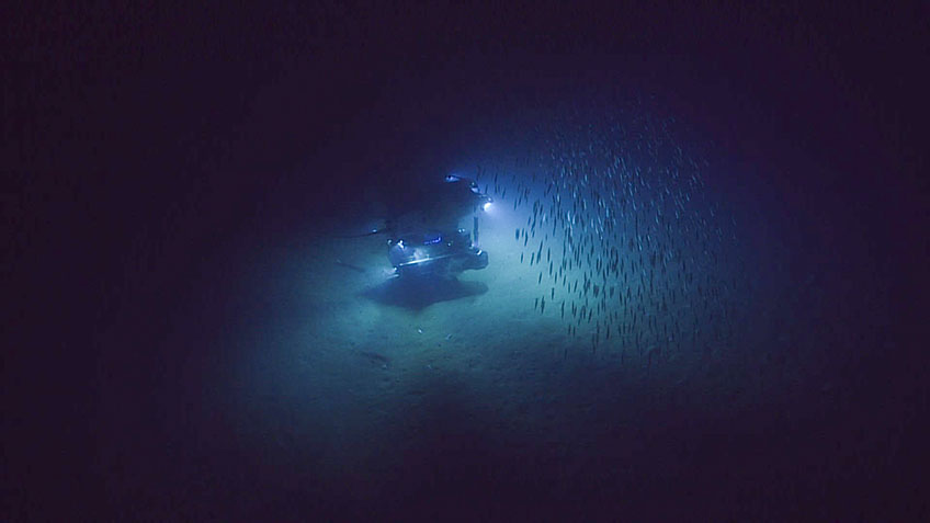 The shallowest depth that the ROV Deep Discoverer dives at is 250 meters, below the depth that severe storms have been measured to cause disturbances.