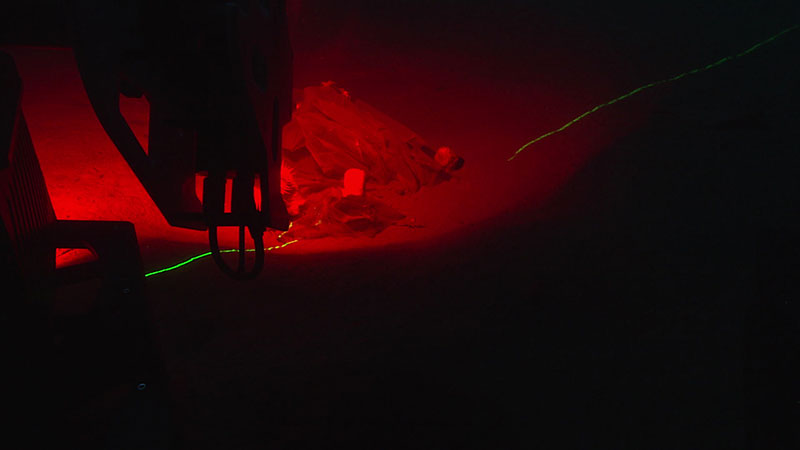 Scanning the same marine debris using red ambient light and a complimentary green laser.