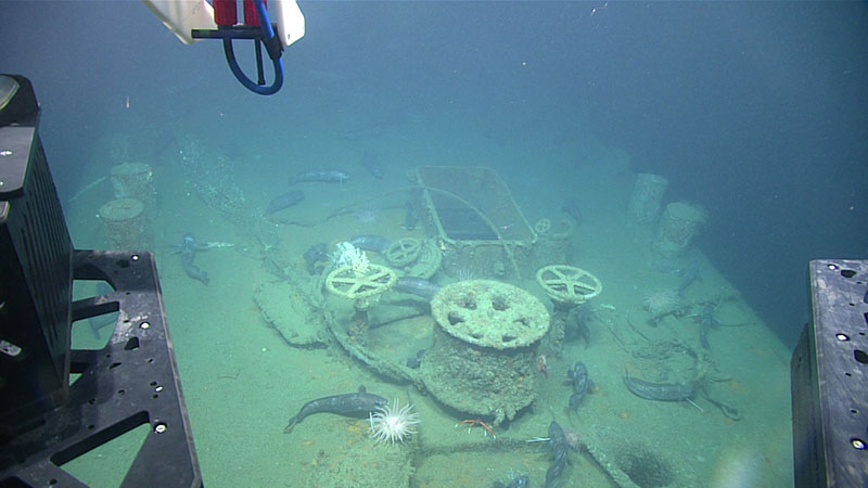 Image from ROV Deep Discover looking down at a capstan on the forward deck, with the prow towards the bottom of the image. Note the hake fish aggregated on the ship.